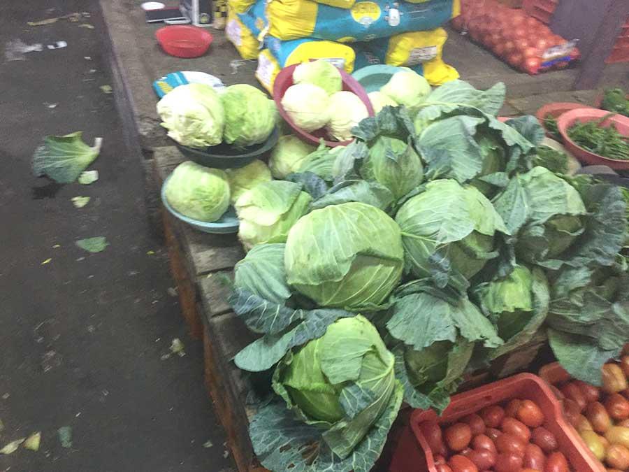 durban-lettuce